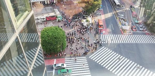渋谷のクロッシングビューから見えるスクランブル交差点