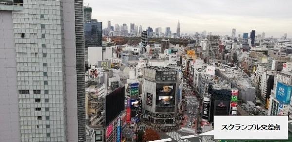 渋谷フクラス17Fシブニワから見下ろす渋谷スクランブル交差点