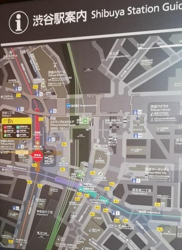 渋谷駅構内図map(銀座線明治通り方面改札前)