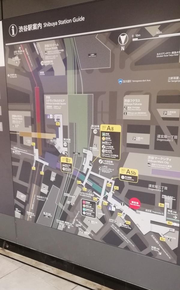 渋谷駅構内図案内map(WONDERCOMPASS前)