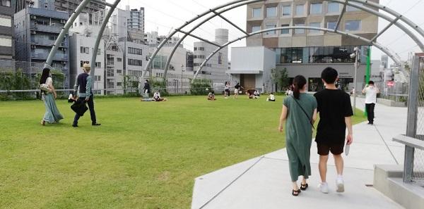 渋谷宮下公園の芝生