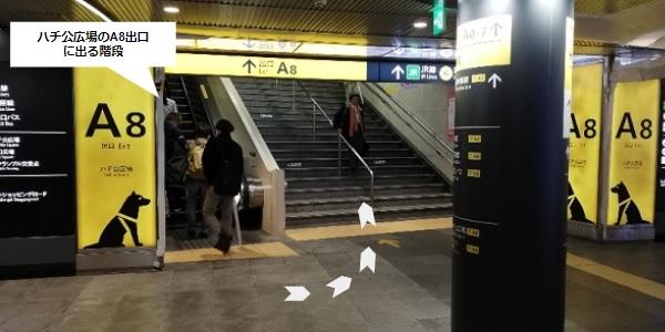 渋谷駅A8出口前の階段